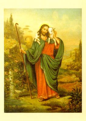 Arany Biblia képeslap csomag (ÚSZ) / 50%
