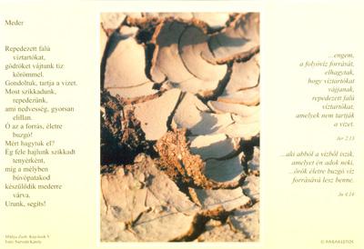 Kép-letek V. Meder
