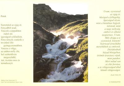 Kép-letek VI. Patak