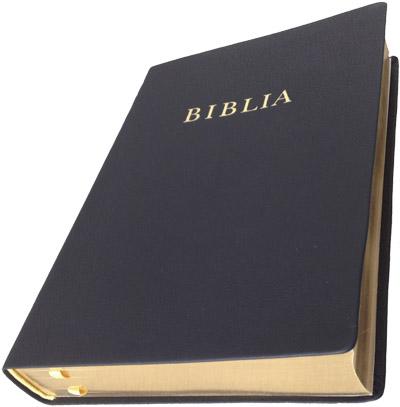 Biblia RÚF nagy, bőr, élmettszett