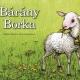 Bárány Borka