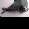 Jónás és a cethal bábok